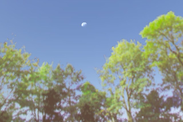 moon-in-daytime